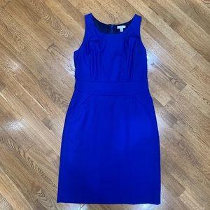J.Crew royal blue 100% Italian wool sheath dress